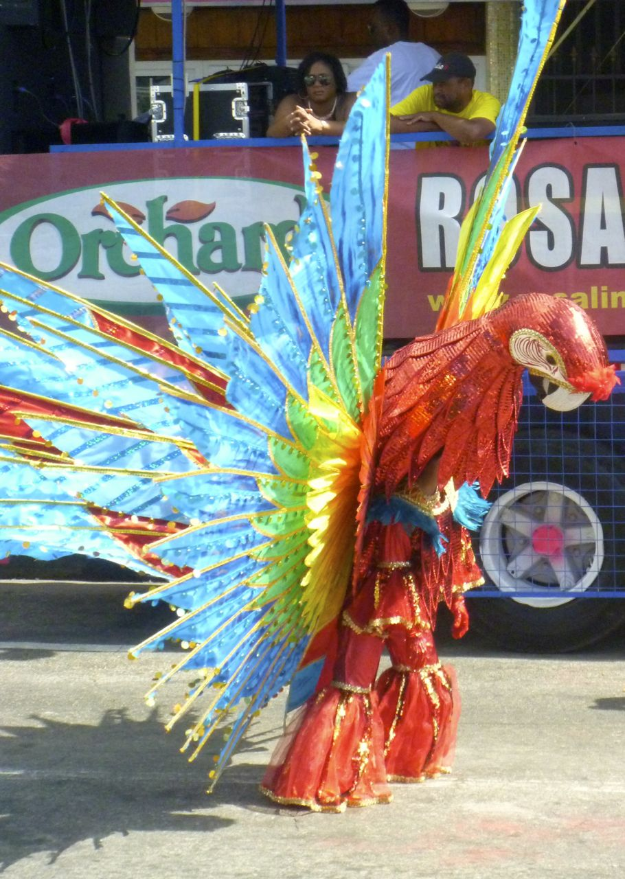 Ein Papagei mit bunt geschmückten Federn schmückt die Grande Parade in Trinidad