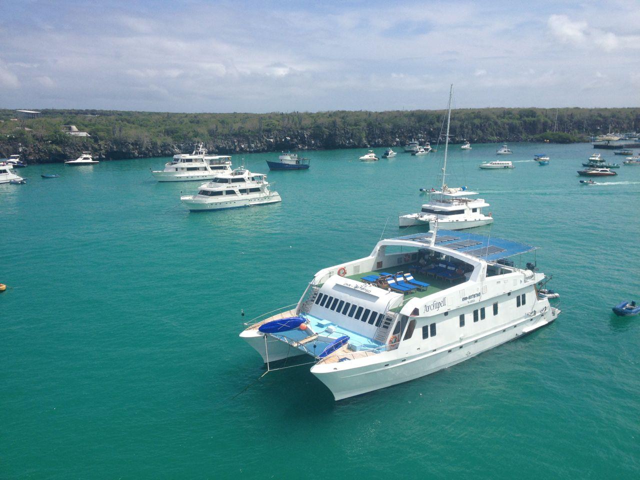Vor Puerto Ayora liegen haufenweise kleine Kreuzfahrtschiffe um die hapa na sasa herum