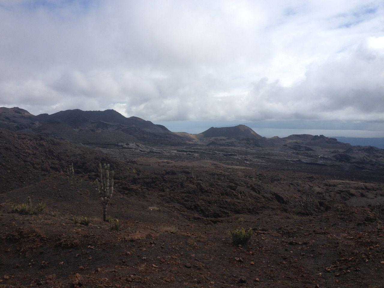 Hier wälzte sich der Lavastrom vom Vulkan Sierra Negra den Berg hinunter