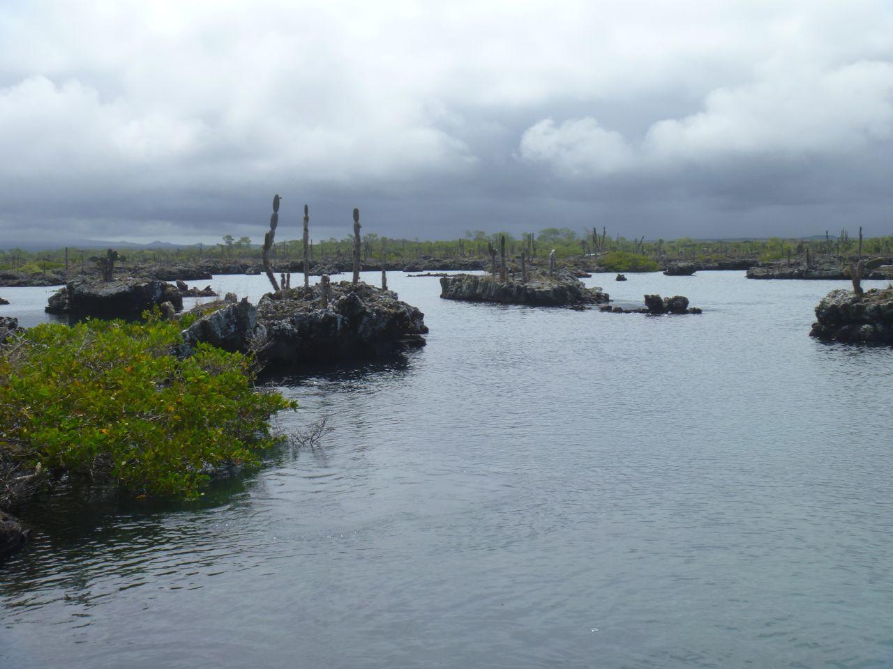 Bizarre Landschaft in den Lavatunneln auf Isabella Galapagos