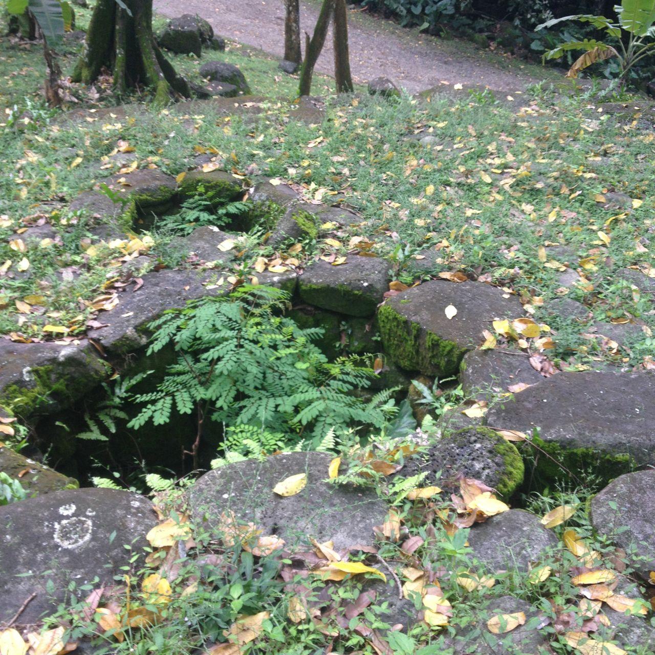 Grosse Löcher im Boden dienten dazu die zu verspeisenden zu lagern.