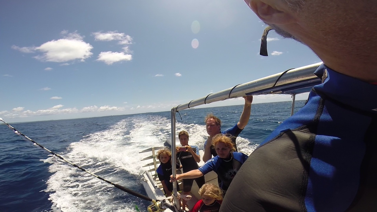 Die Angel ist draussen, auf dem Weg zu den Buckelwalen