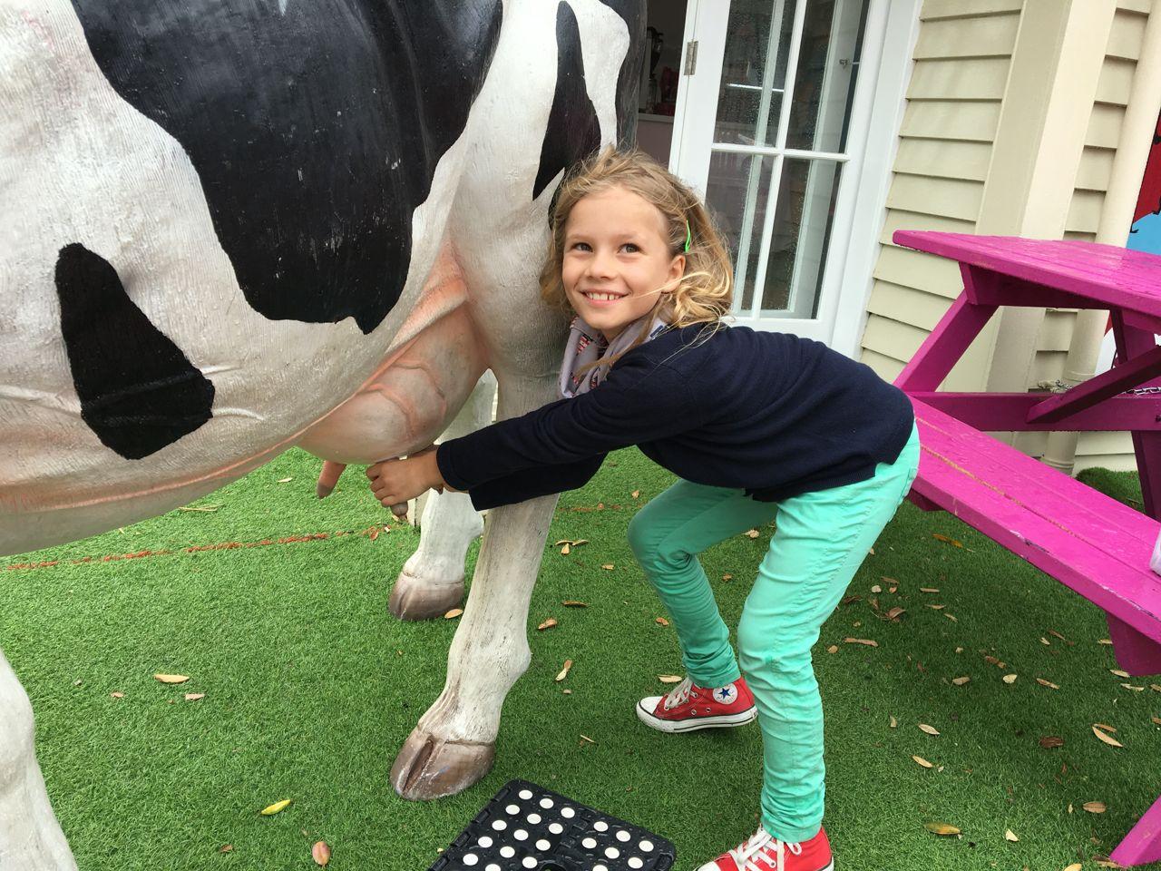 Freudiges Melken einer Kuh in Auckland.