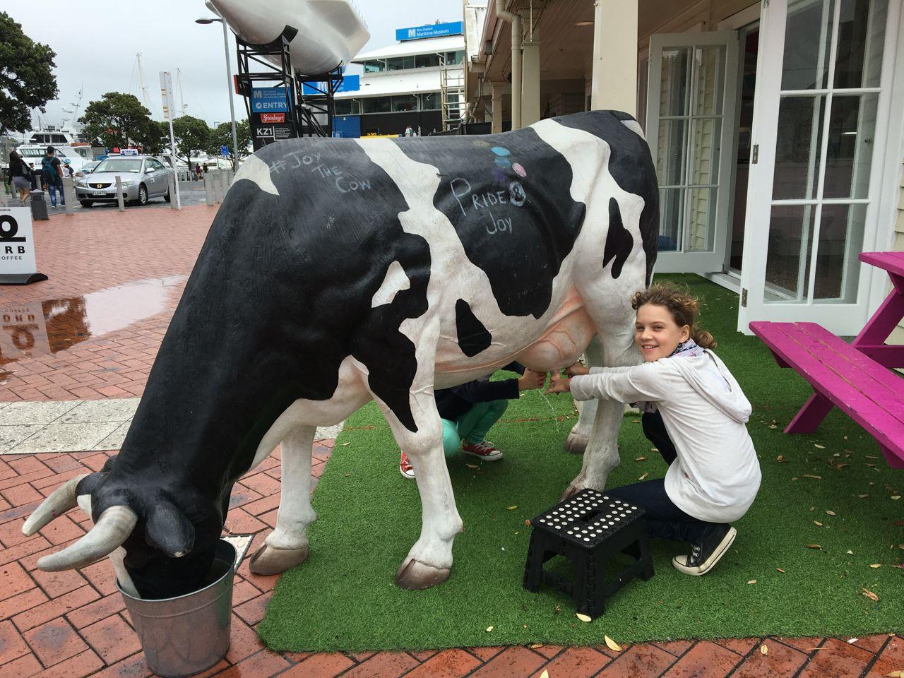 Ein kurzer Stop bei den Tieren in Auckland.