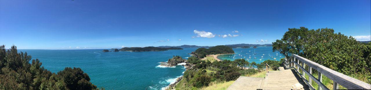 Die hapa na sasa wieder in ihrem Element vor Robertson Island in Neuseeland.