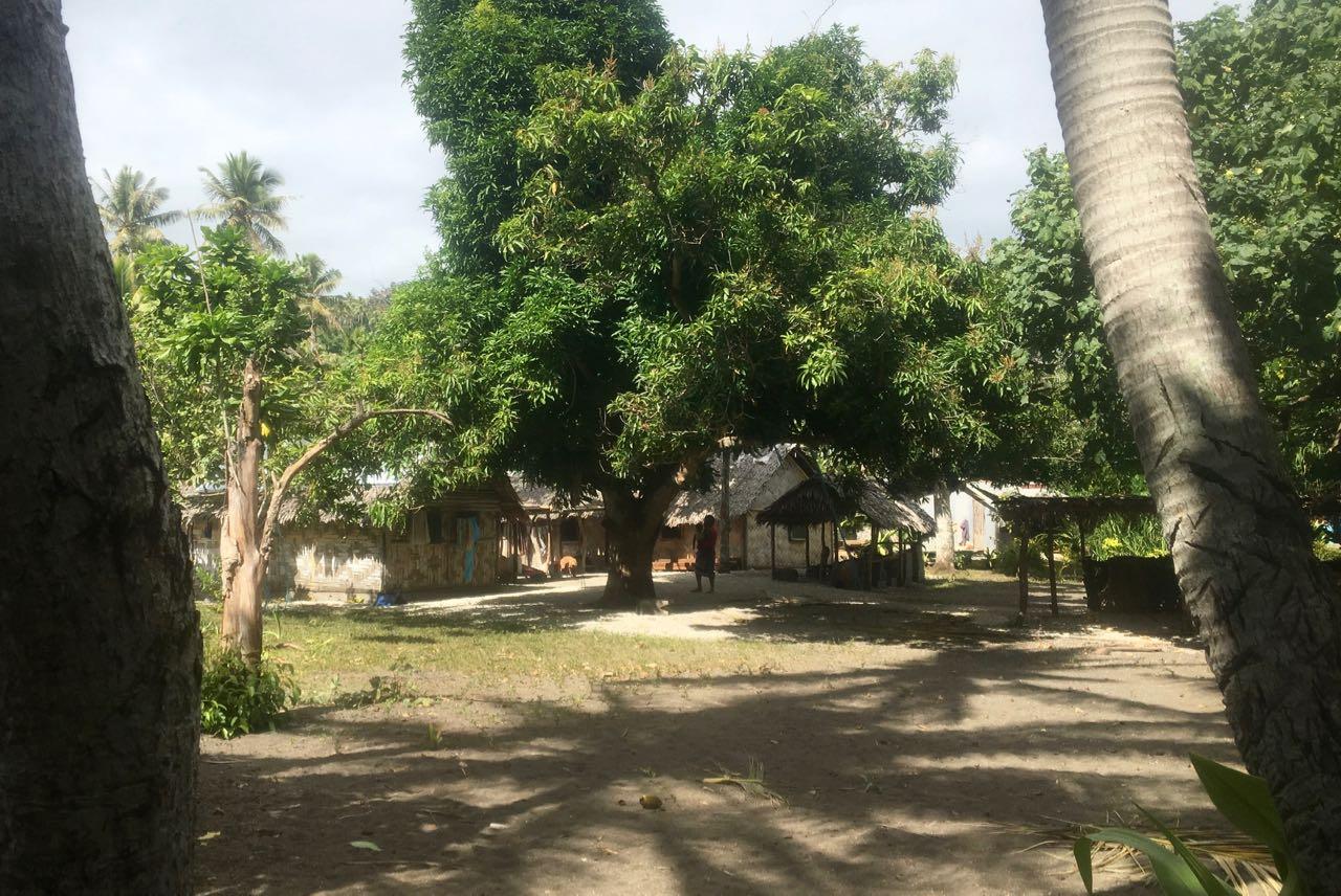 Die Häuser auf Epi sind vorwiegend noch traditionell gebaut