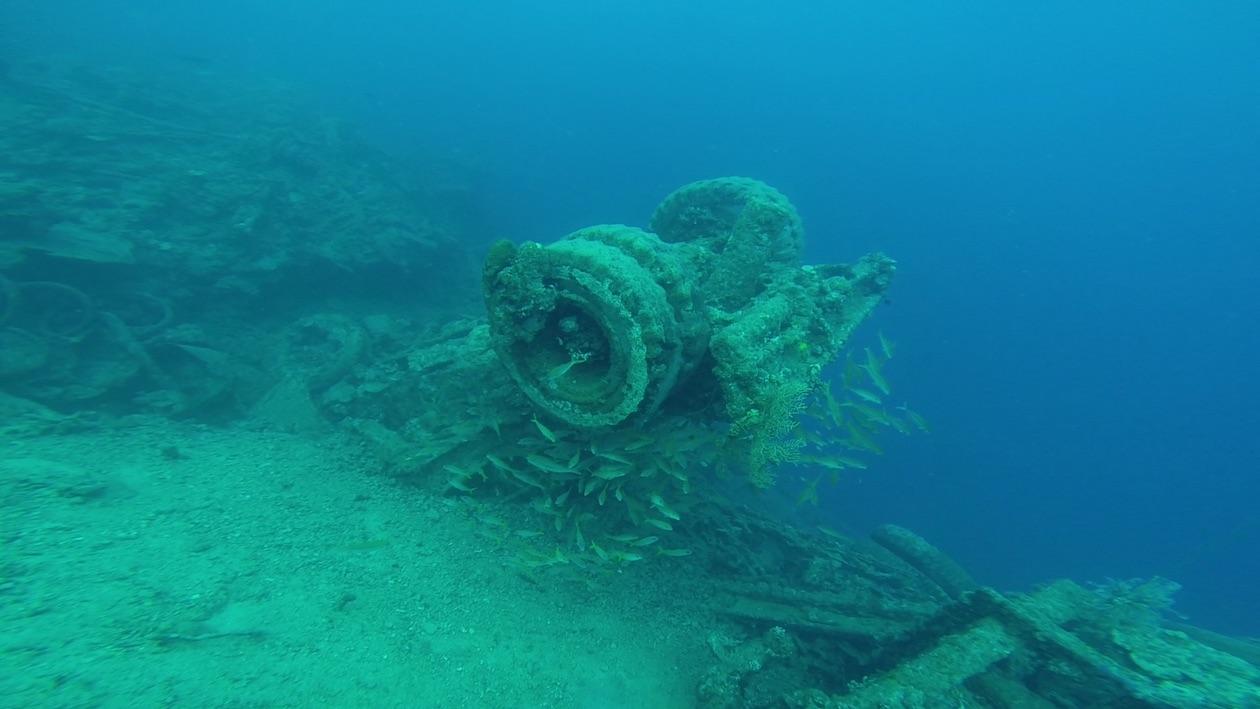 Die Fahrzeuge am Million Dollar Point in Espiritu Santo Vanuatu bilden eine gute Lebensgrundlage für Korallen und Fische