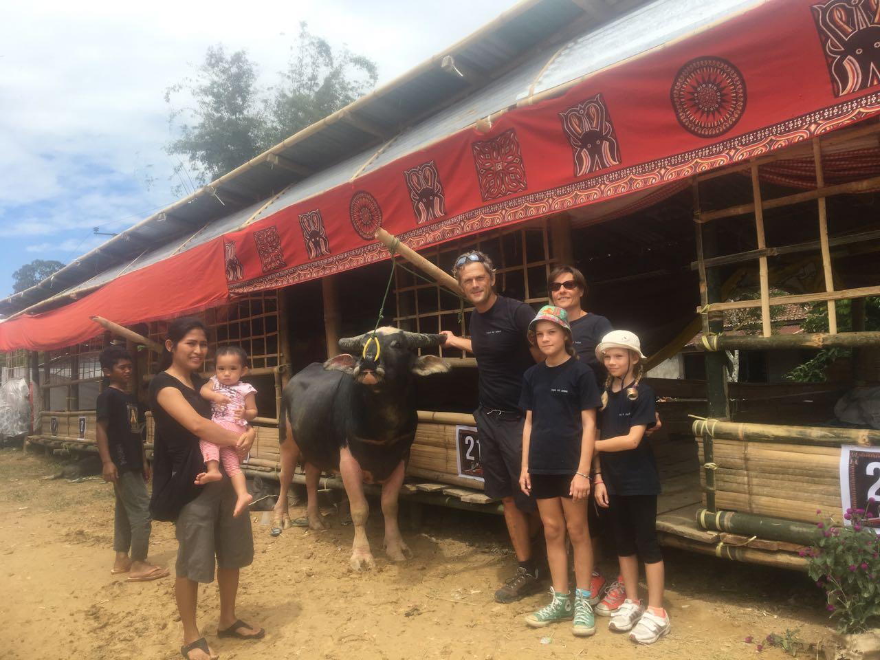 Familienporträt der hapa na sasa crew mit Büffel hier in Tana Toraja