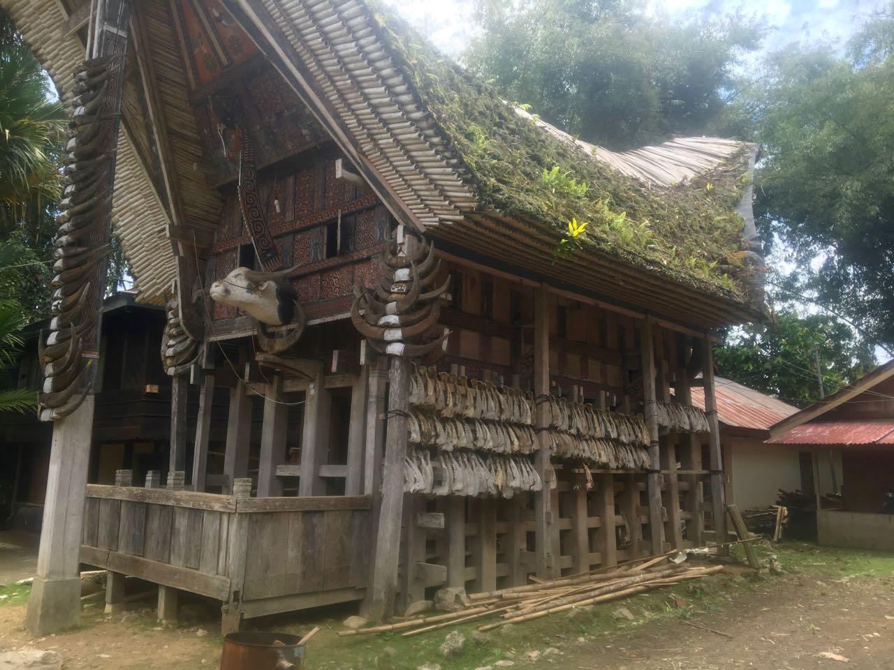 An den traditionellen Häusern werden in Tana Toraja Indonesien die Hörner der geopferten Büffel befestigt