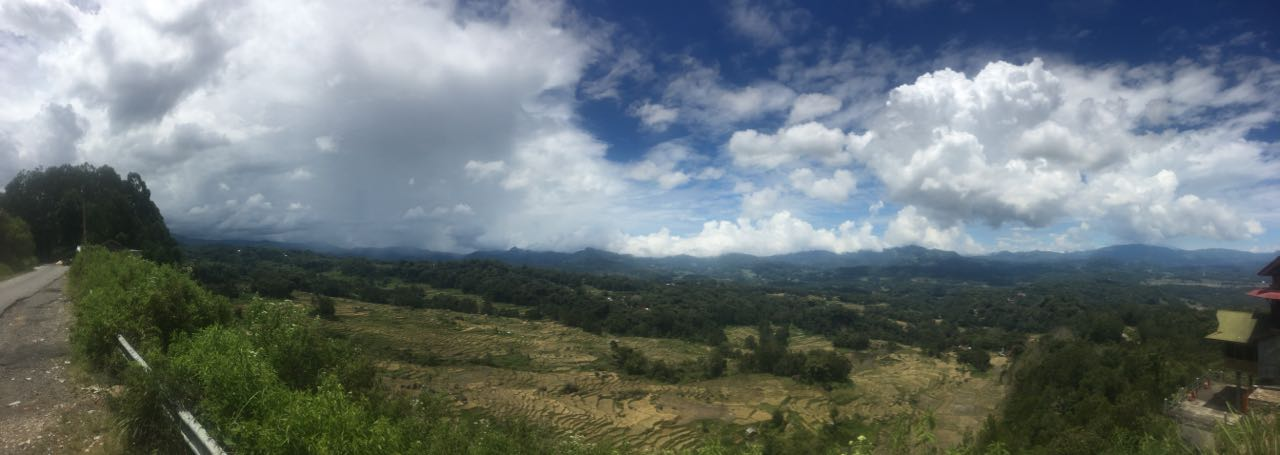 Terrassierte Reisfelder in Tana Toraja