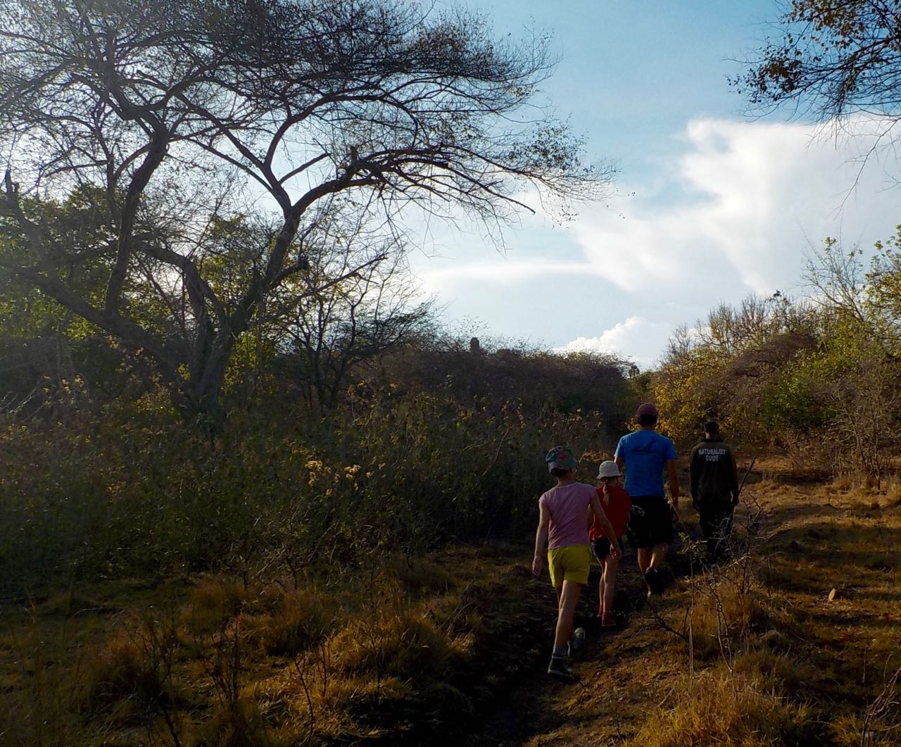Die Crew der hapa na sasa auf der Suche nach den Komododrachen