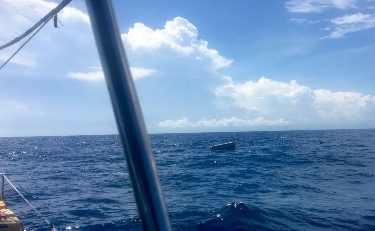 Eine Long Line Boje mitten im Indischen Ozean